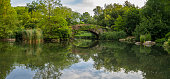 Gapstow Bridge in Central Park  in summer, early morning