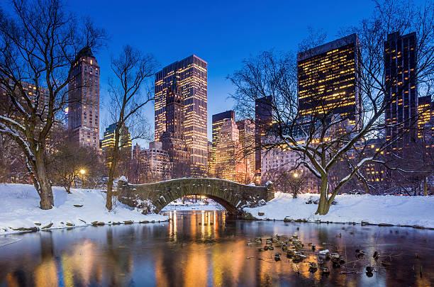 gapstow most w zimie, central park - central park manhattan zdjęcia i obrazy z banku zdjęć