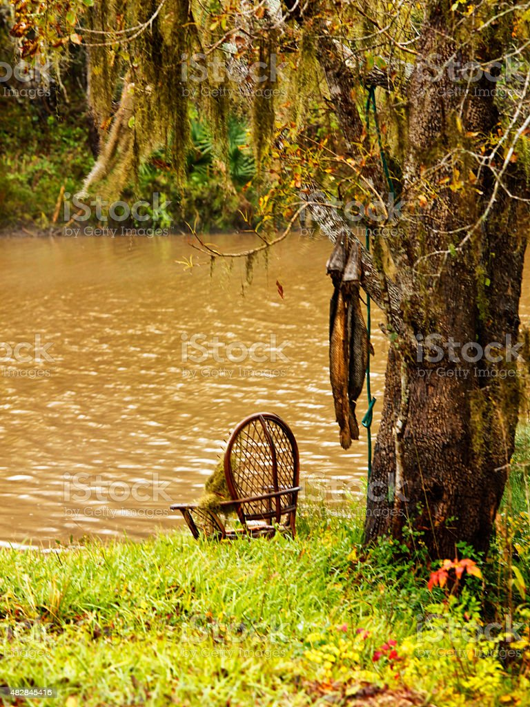 Gar Fishing stock photo