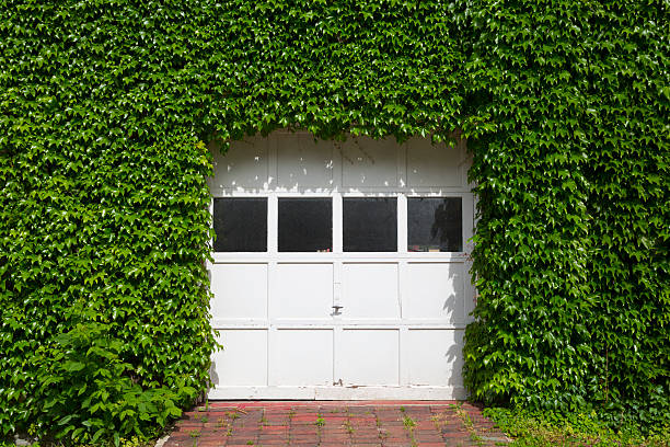 porta de garagem - ivy building imagens e fotografias de stock