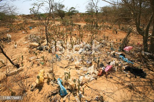 Garbage and plastic bags trapped in thorny bushes in the outskirts of Uribia, the indigenous capital of the country, located in La Guajira Department in northern Colombia. The area is home to indigenous peoples of the the Wayuu ethnic group.