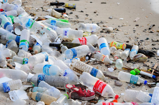 garbage and plastic bottles on a beach - pollution stock pictures, royalty-free photos & images