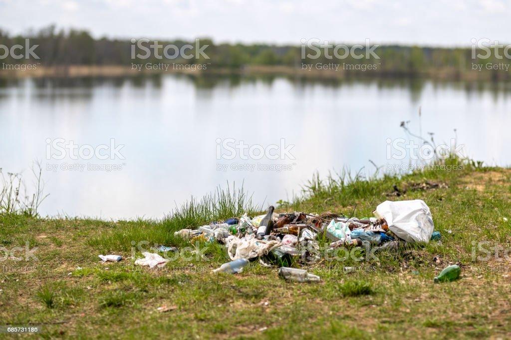 在樹林裡的垃圾堆 免版稅 stock photo