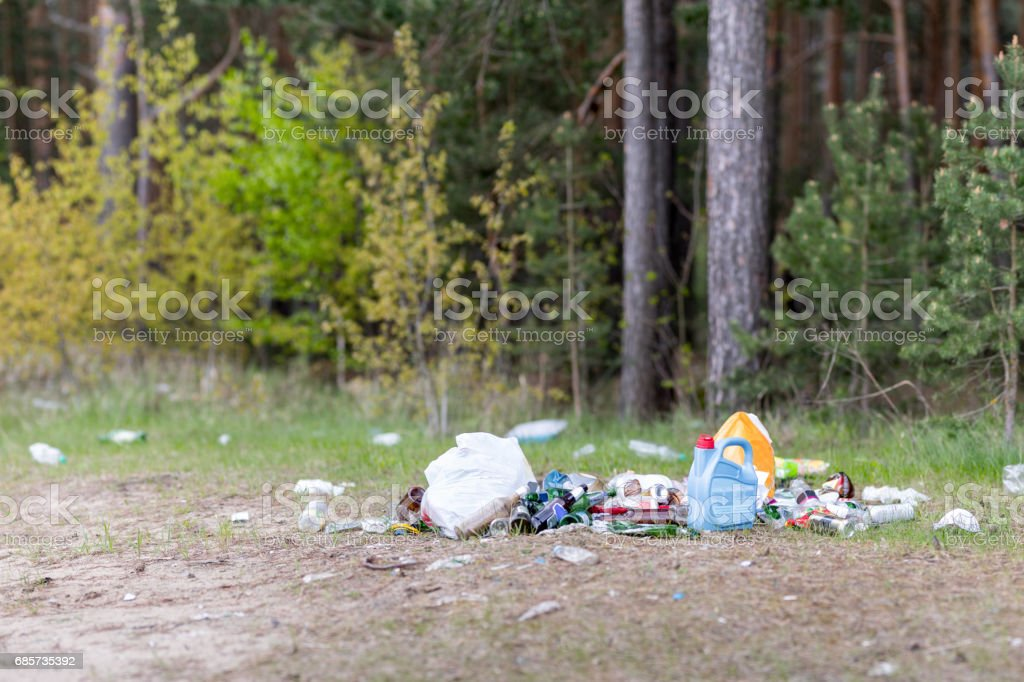 Garbage dump in the woods foto de stock royalty-free