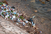 Garbage, mostly aluminum cans and plastic containers, on a bank of the Nile River in the center of Cairo, Egypt