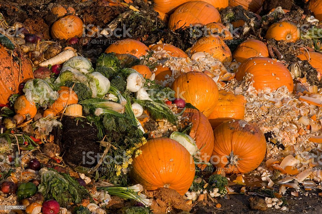 Garbage Heap for Compost stock photo