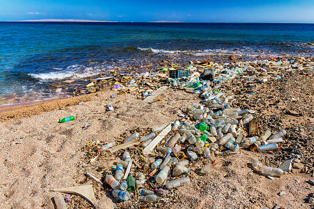 garbage in the beach - ocean plastic stock pictures, royalty-free photos & images