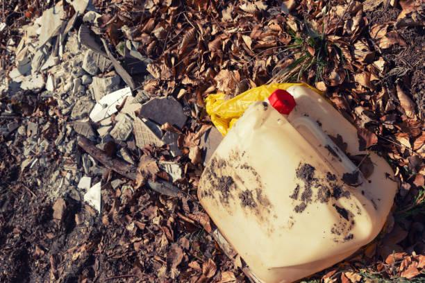 Müll im Wald – Foto