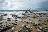 istock Garbage on beach, environmental pollution in Bali Indonesia. 1079098104