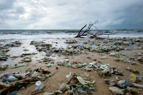 garbage on beach, environmental pollution in bali indonesia. - plastic stock pictures, royalty-free photos & images