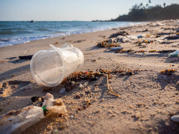 Müll am Strand. Verschütteter Müll am Strand der Großstadt. Leere gebrauchte schmutzige Plastikflaschen. Schmutzige Sandstrand des Schwarzen Meeres. Umweltverschmutzung. Ökologisches Problem. – Foto