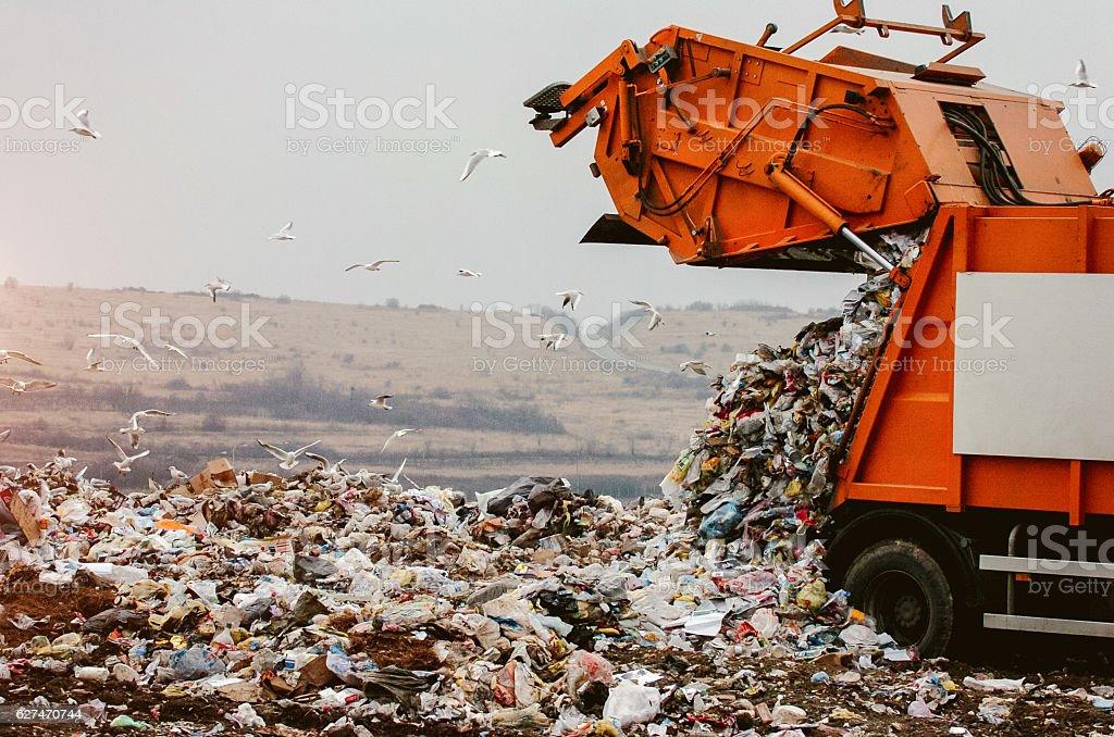 Garbage truck dumping the garbage - foto de stock