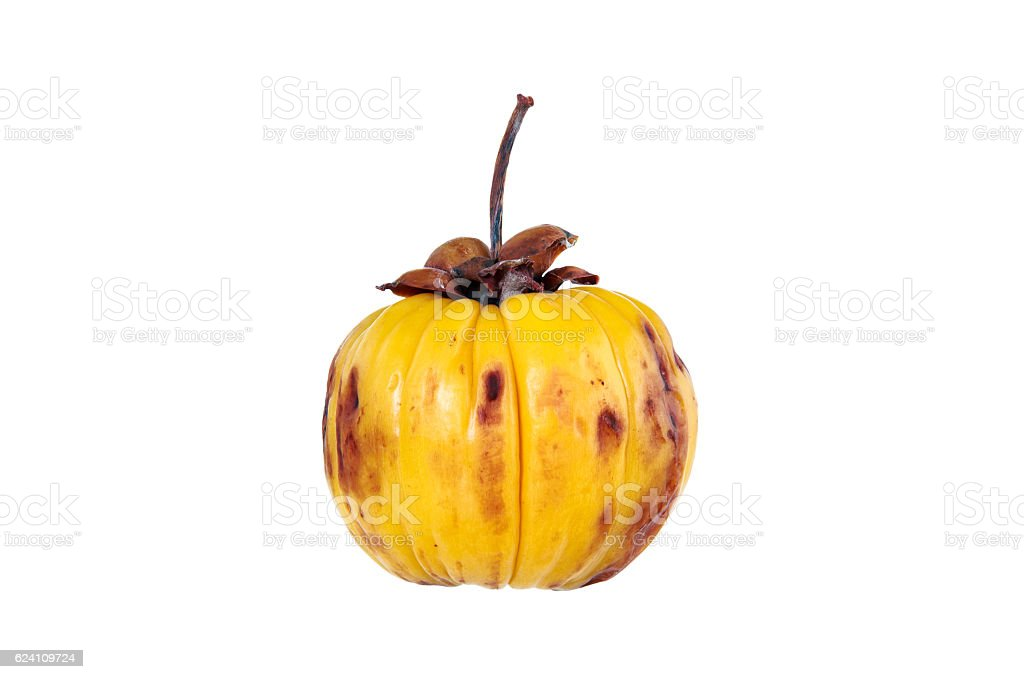 Garcinia Cambogia Fruit Isolated On White Fruit For Diet Stock Photo
