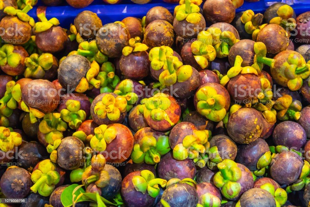 Garcinia mangostana tropical mangosteen fruit stock photo