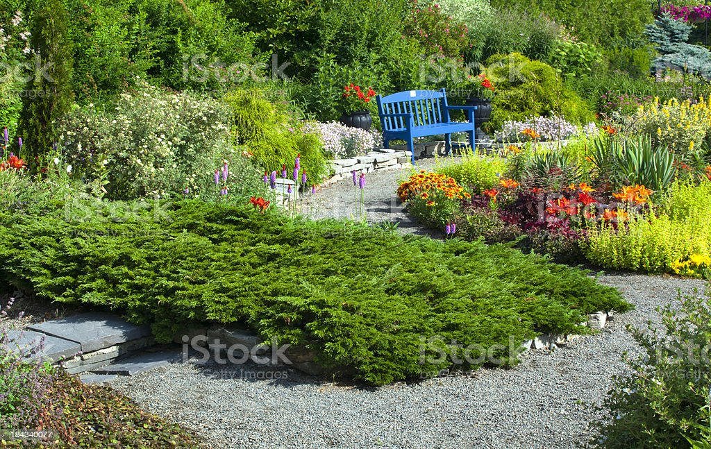 Garden and Blue Bench royalty-free stock photo