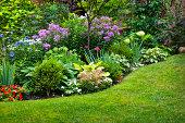 istock Garden and flowers 154046398