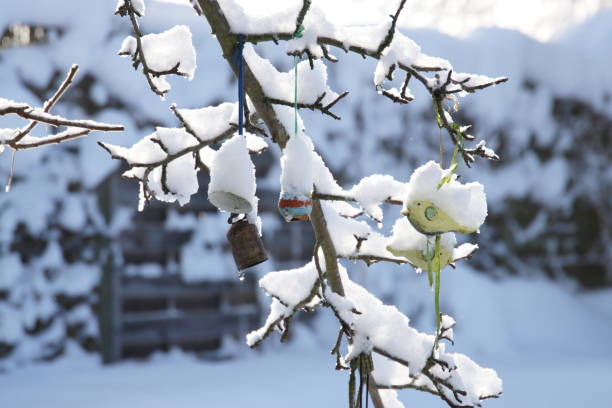 Garden and Pond after the snow storm January 2019. Bavaria, Germany. stock photo