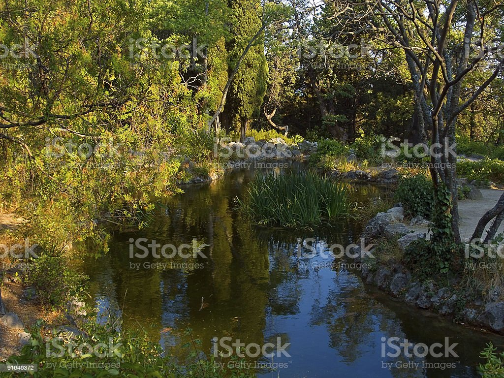 Garden and pond royalty-free stock photo