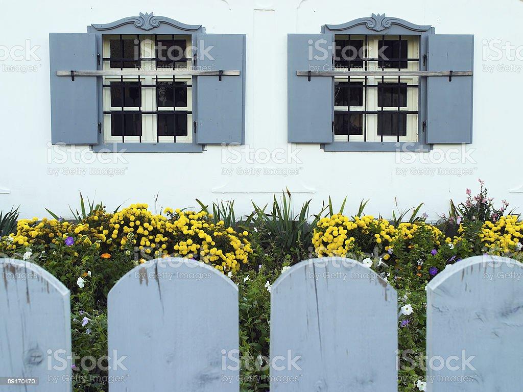 Garden and windows royalty-free stock photo