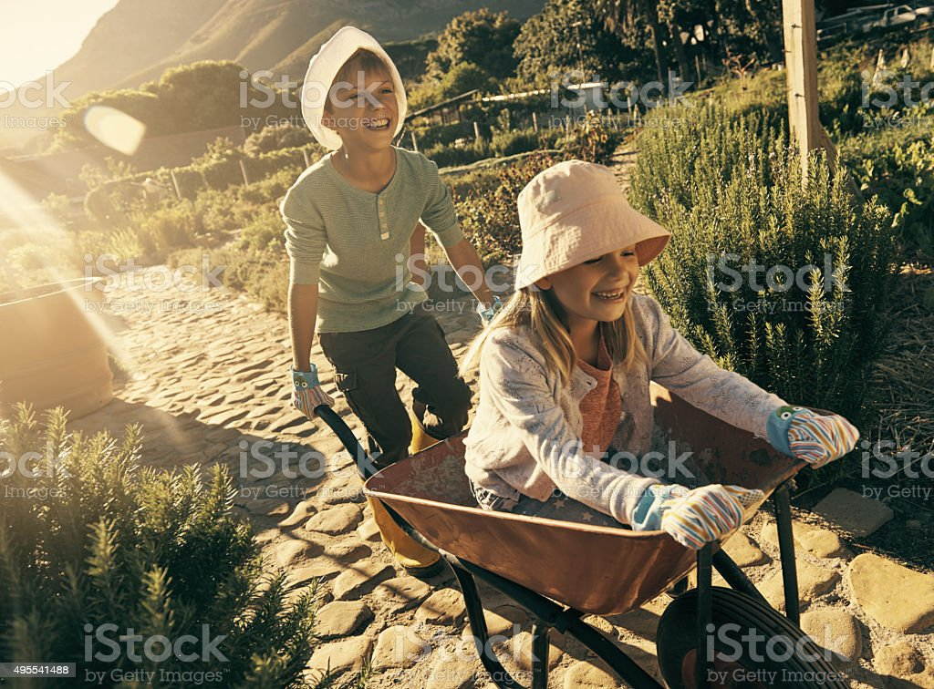 Garden antics stock photo