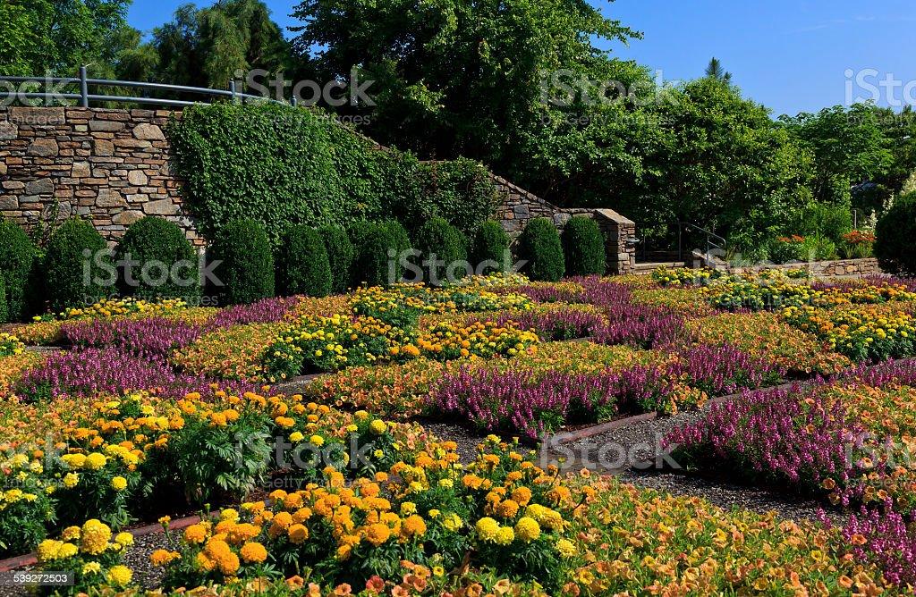 Garden at NC Arboretum stock photo