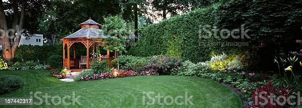 Photo of Garden at Night