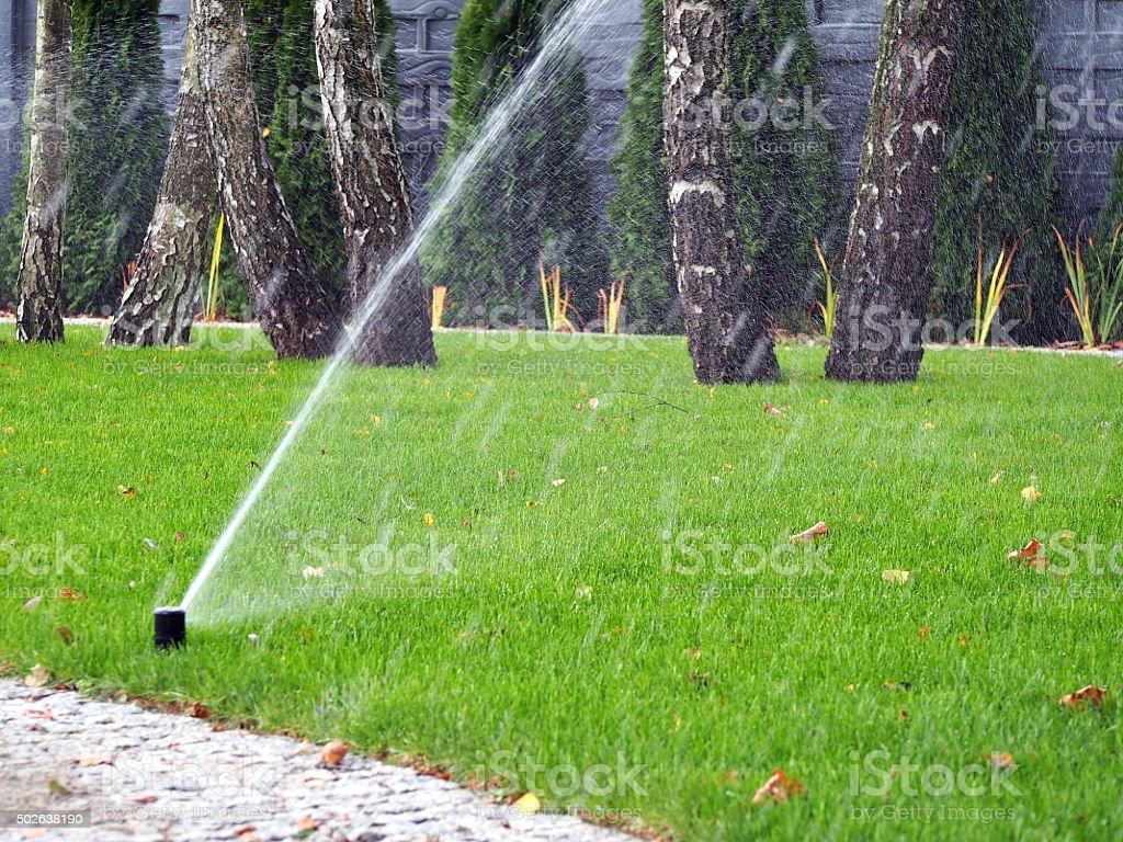 Sistema Di Irrigazione Automatica Giardino Rilevatore Di