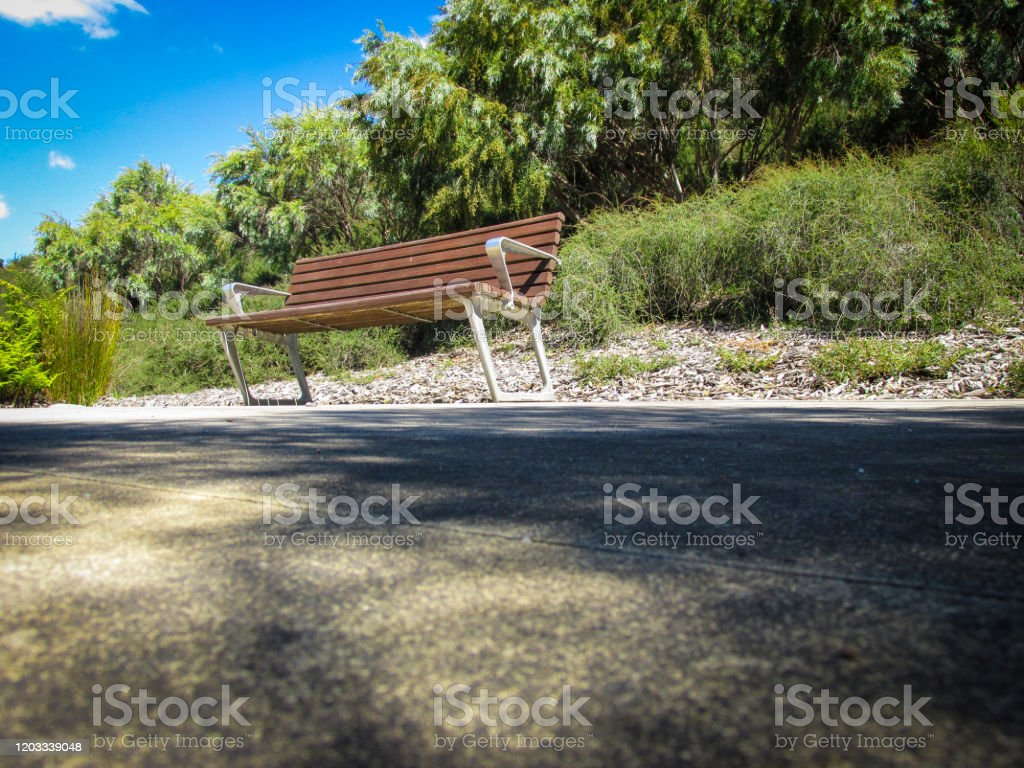 Garden Bench In Cranbourne Botanic Gardens A Bench Although Banal Object Carries Symbolism In Tarot Card Reading Stock Photo Download Image Now Istock