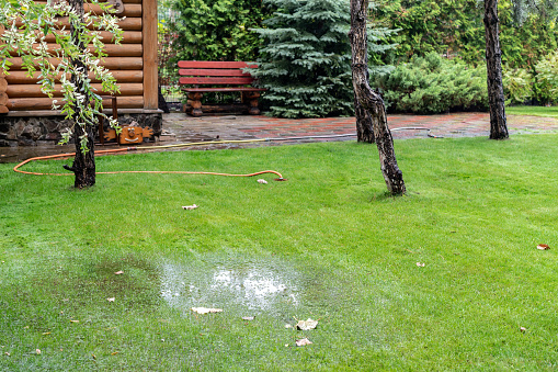 Garden bushes, tree and green grass lawn covered with water due to snow melting thaw and flash high water at spring. Natural disaster deluge flooded house backyard pathway ang greenery at countryside
