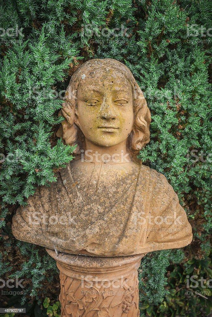 Garden Bust stock photo