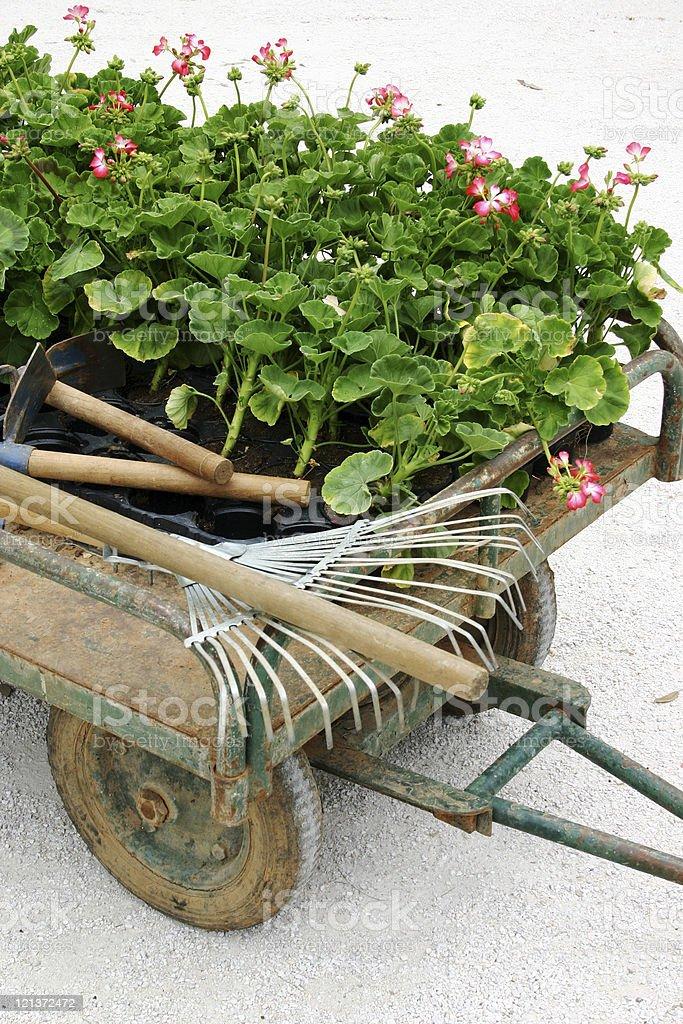 Garden Cart 3 royalty-free stock photo