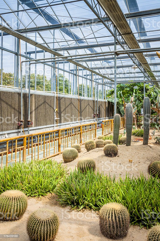 Garden Center Greenhouse royalty-free stock photo