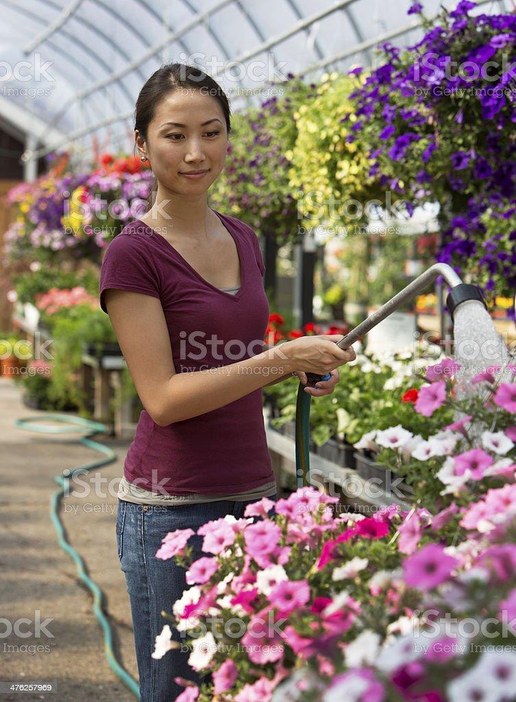 Garden Center royalty-free stock photo