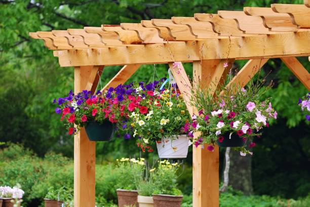 Garden center with wooden boards and flower pots stock photo
