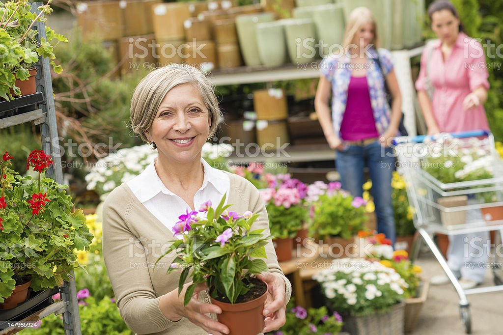Garden centre senior lady hold potted flower royalty-free stock photo
