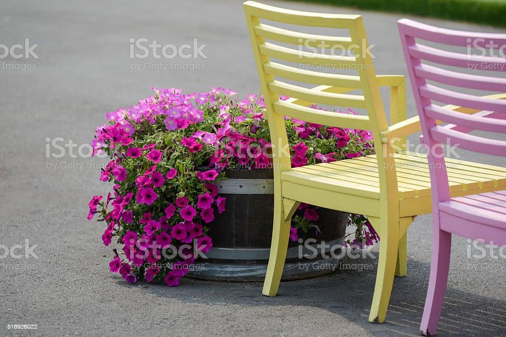 garden chairs in pastel tone