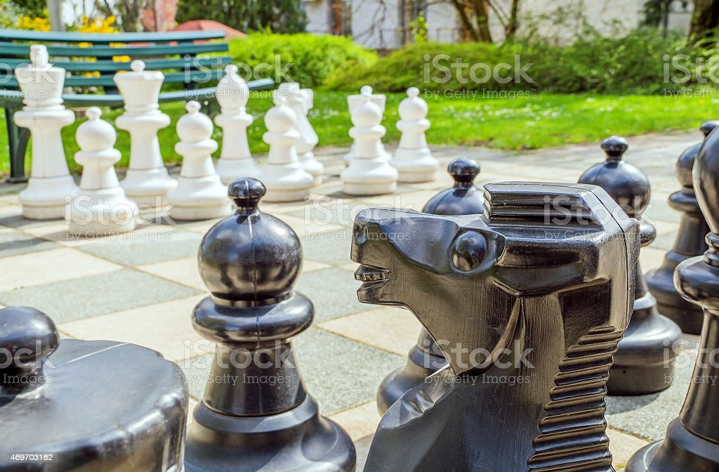 Garden chess stock photo