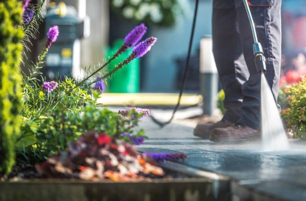 garden cleaning time - high pressure cleaning stock photos and pictures