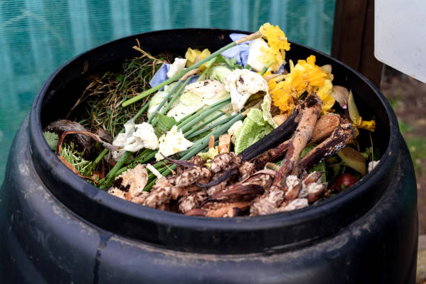 Garden compost bin stock photo
