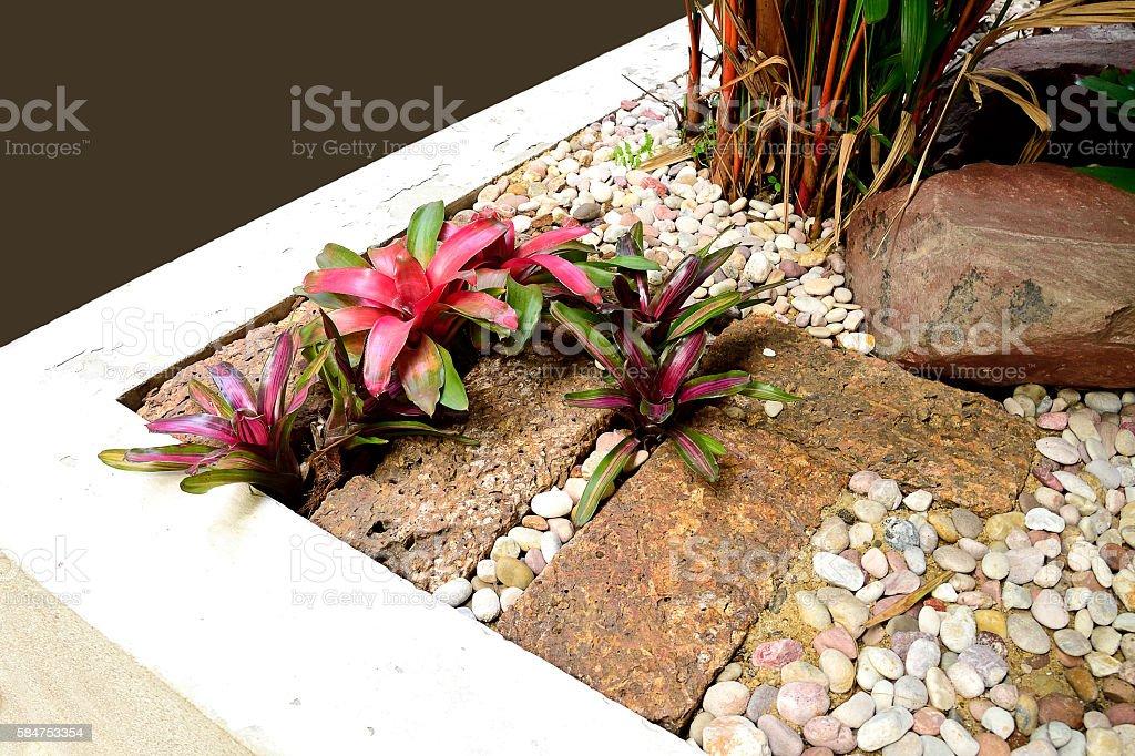 Garden decoration stock photo
