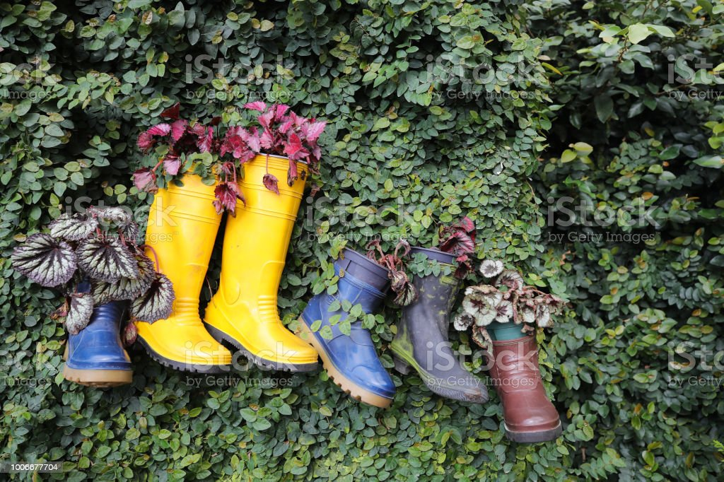 Garden Decoration Plastic Boot Hanging On Leaf Wall Stock Photo