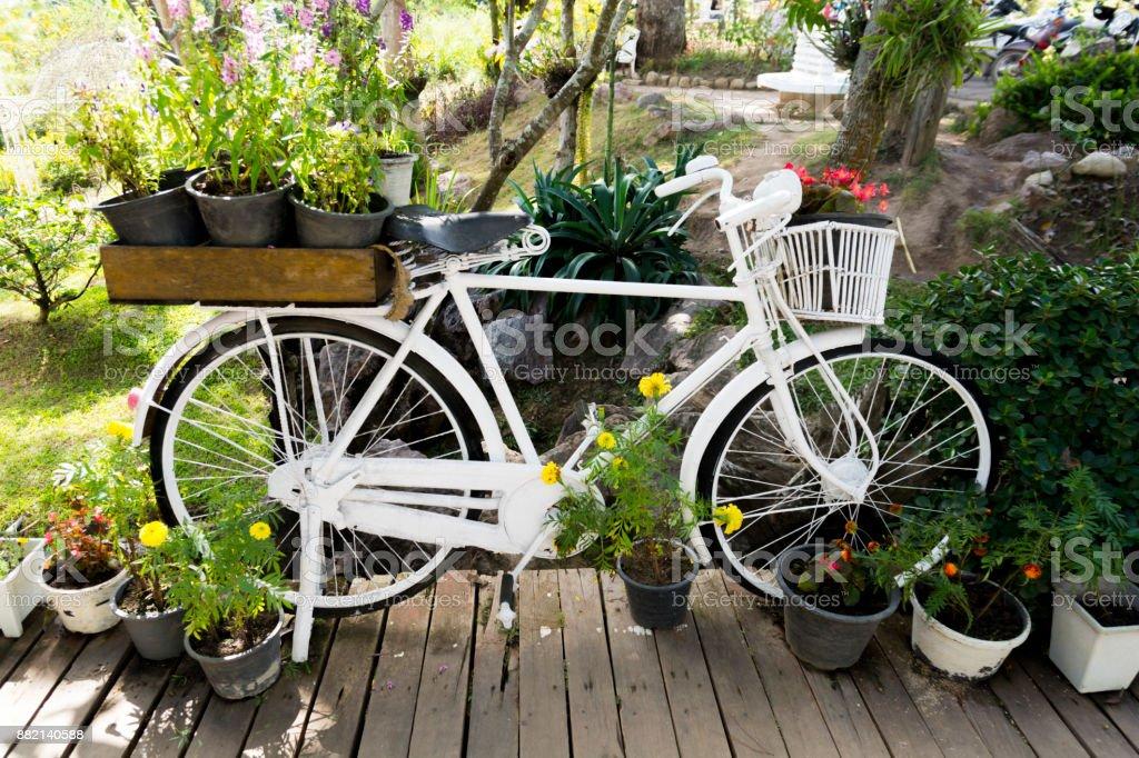 Photo libre de droit de Décoration De Jardin À Laide De Vélo ...