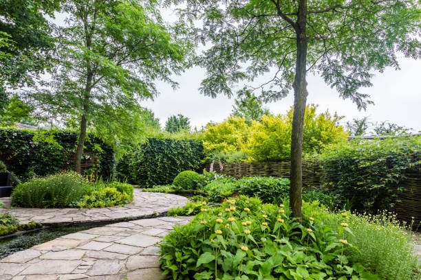 Tuin ontwerp met elementen van de water foto