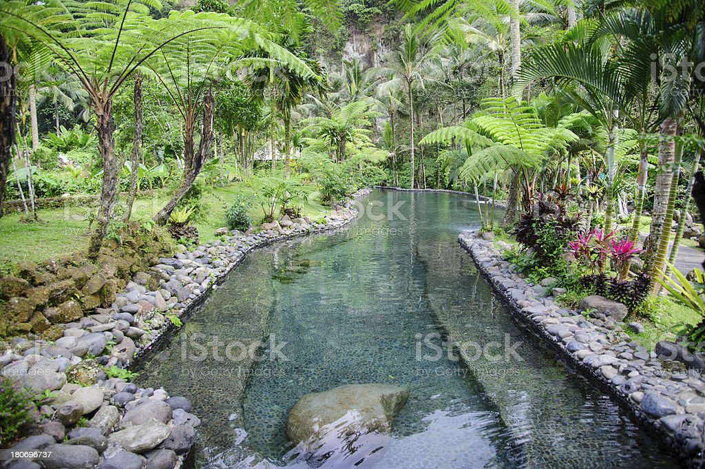 Garden Detail in  Jungle Resort royalty-free stock photo