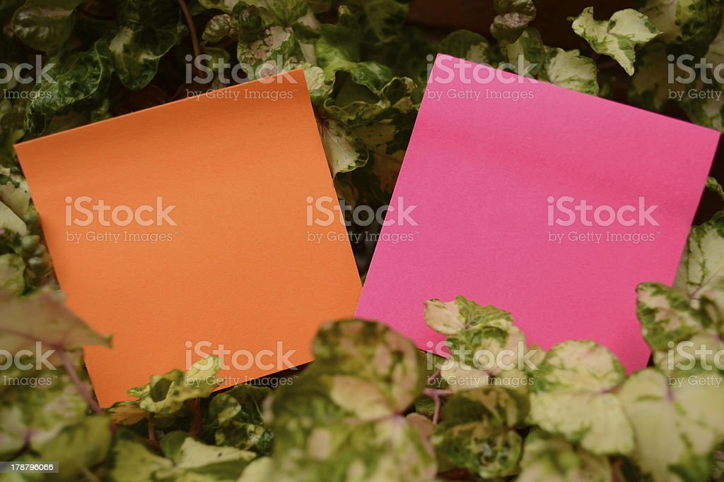 Garden diary royalty-free stock photo