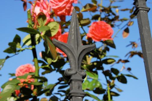 Garden Fence Fluer-De-Lis
