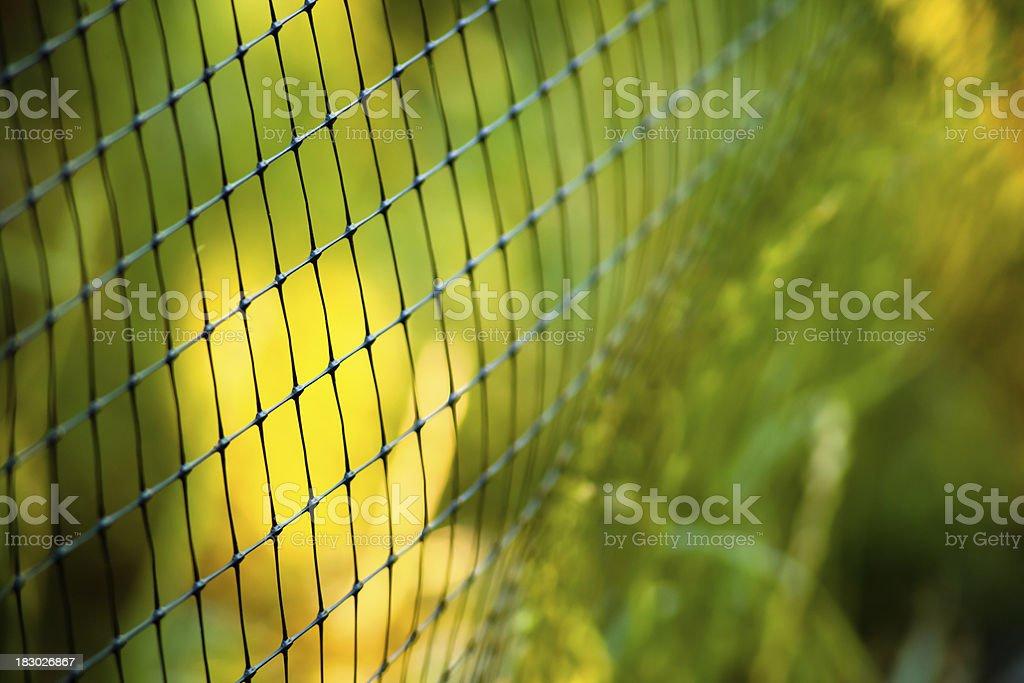Garden Fencing royalty-free stock photo