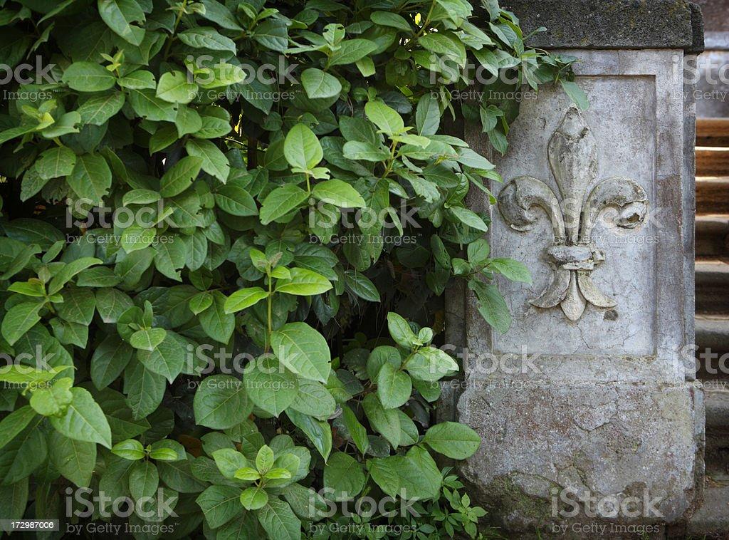 Garden Fleur de Lys stock photo