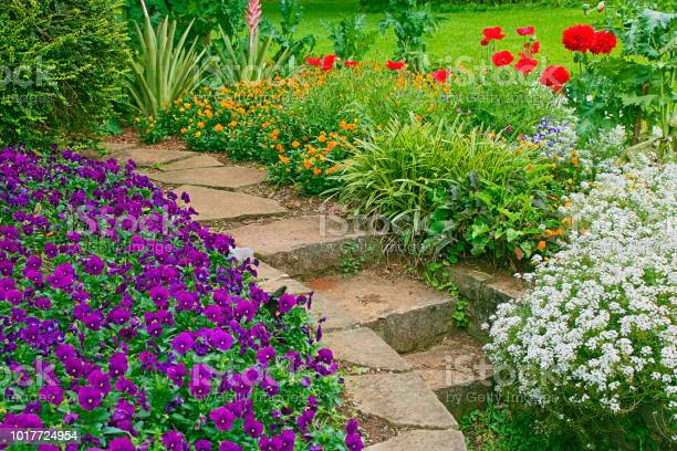 Garden flowerbed detail in public park picture id1017724954?b=1&k=6&m=1017724954&s=612x612&h=gfkytbxjw58nb1loyuojoki4kddsziln2prn7nhwtgo=