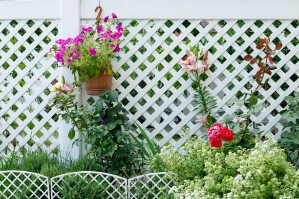 Gartenblumen auf dem Hintergrund von weißen Kunststoffzäunen im Hüttendorf – Foto